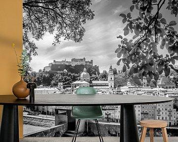 SALZBURG Gorgeous Old Town with Citywall | Monochrome van Melanie Viola