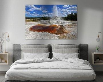 kasteel geiser in Yellowstone von Antwan Janssen