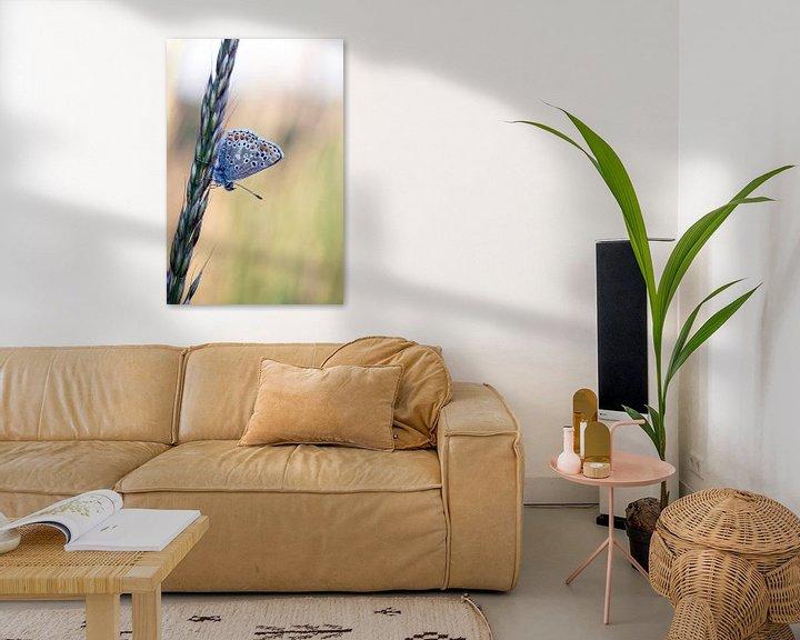 Sfeerimpressie: Schilderachtige foto van een mooie kleine vlinder van Maurice de vries