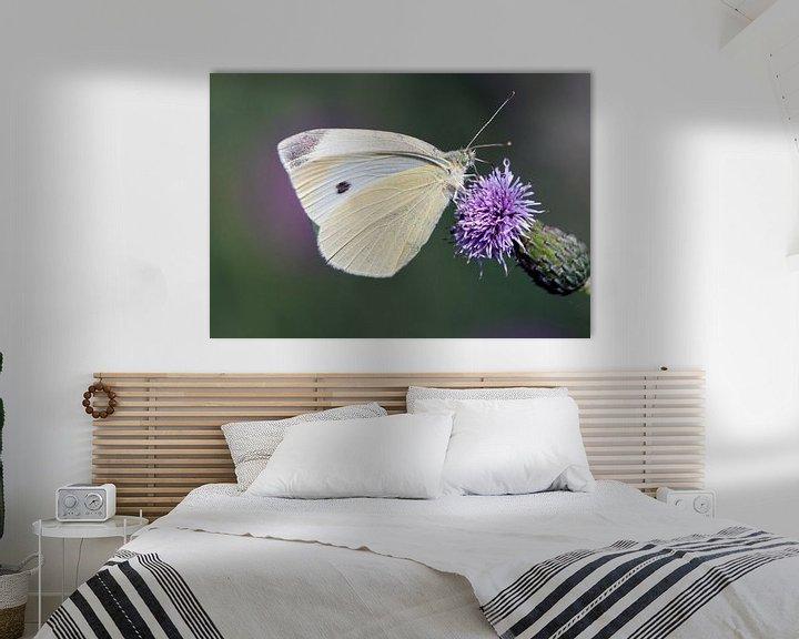 Impression: Papillon blanc sur Maurice de vries