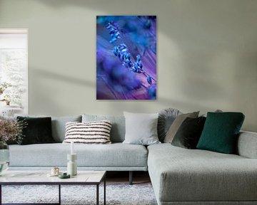 BLUE SPANGLES no1C van Pia Schneider
