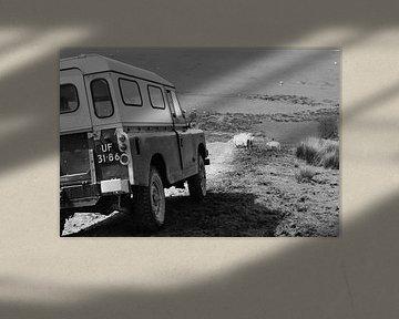Land Rover Series 109. van Monique ter Keurs
