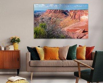 Montagnes de la Table dans le parc national de Canyonlands, Utah, USA sur Rietje Bulthuis