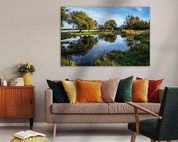 Waterpoel met spiegelbeeld van Jaap Mulder