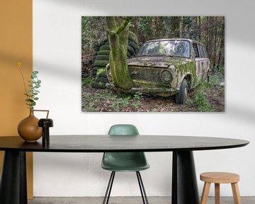 verlaten plaats - oude roestige auto van Carina Buchspies