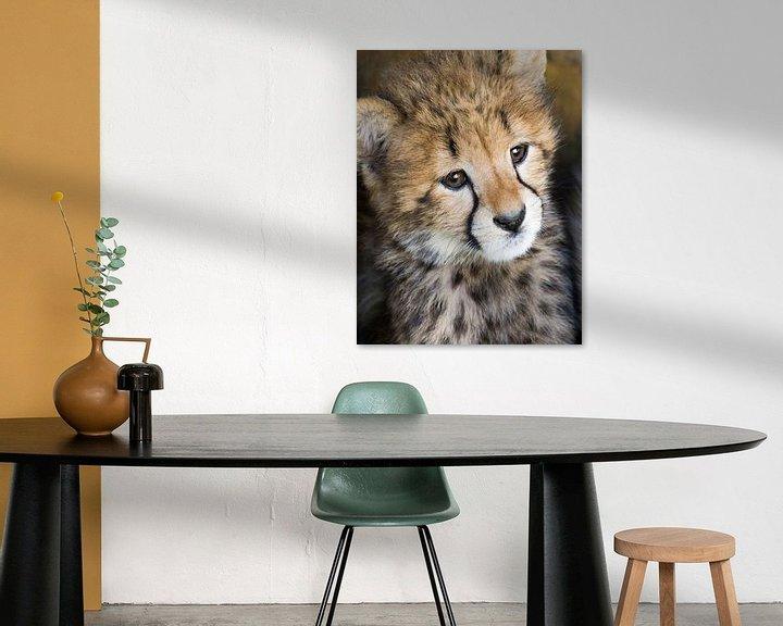 Beispiel: Junger Gepard von Marcel van Balken