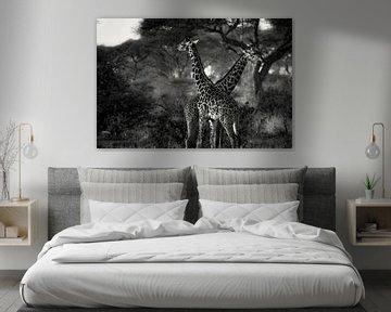 Giraffes in Tanzania zwartwit van Jovas Fotografie