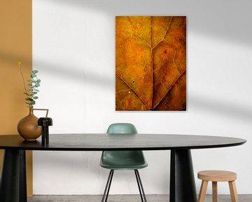 Surrealistisch oranje boomblad van Vectorific Design