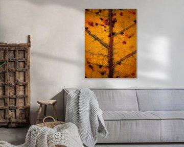Oranje tint glas in lood boomblad van Vectorific Design