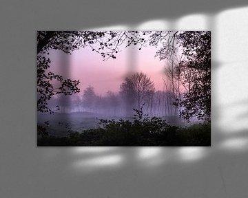 Misty Forest Window sur William Mevissen