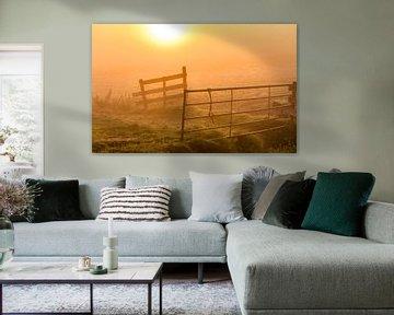 zonsopkomst in het weiland van Edwin Sonneveld