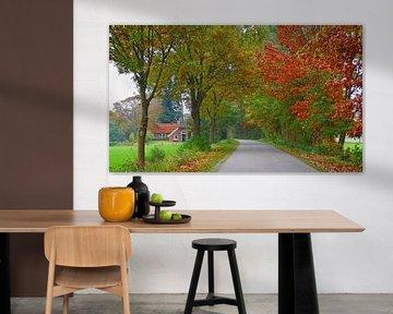 Country-Road (Landweggetje in Twente) van Caroline Lichthart