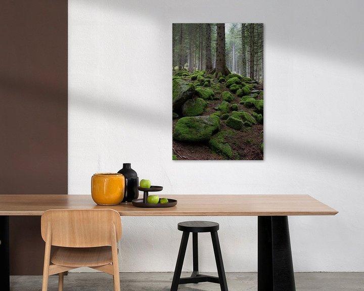 Beispiel: Mos rotsen von Wim Slootweg