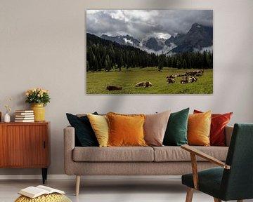 Koeien in de Alpen van Wim Slootweg