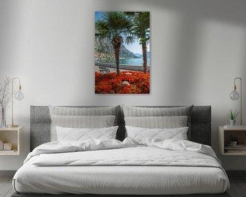 GARDASEE Prächtige Uferpromenade in Limone sul Garda  von Melanie Viola