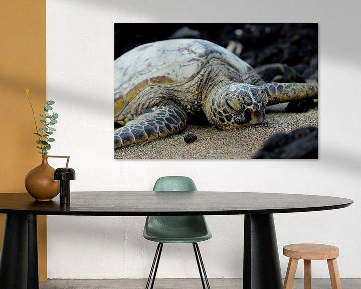 Sfeerimpressie: Zeeschildpad van GoWildGoNaturepictures