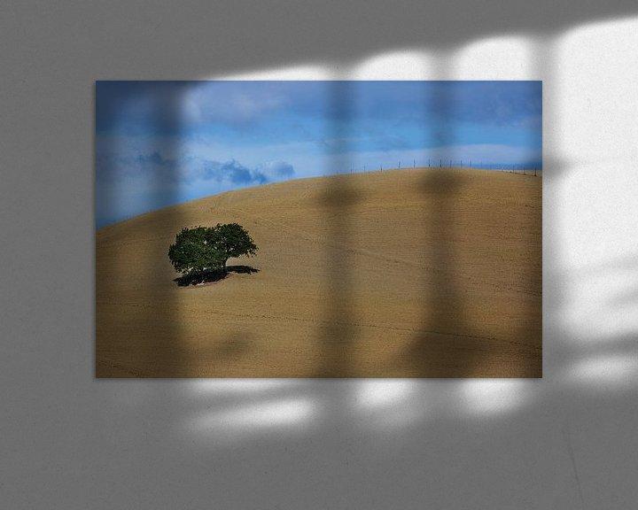 Sfeerimpressie: Landschap Minimalisme in Toscane van Steven Dijkshoorn