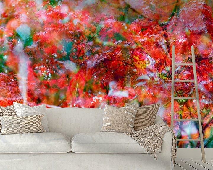 Sfeerimpressie behang: Rood blad van de Japanse Esdoorn  (Oh Happy Day!) van Paula van den Akker