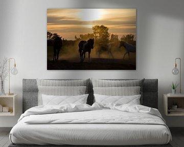 Sunset horses van Dennis van de Water