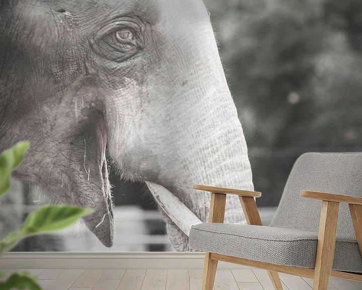 Sfeerimpressie behang: Zoo Antwerpen 3 van Cynthia Jansen