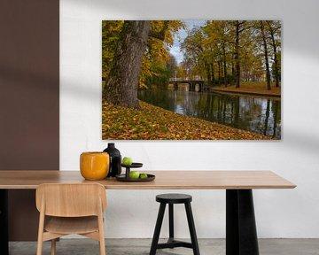 Utrecht - Herfstige Maliebrug van Thomas van Galen