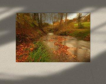 Dromen van de herfst van Antwan Janssen