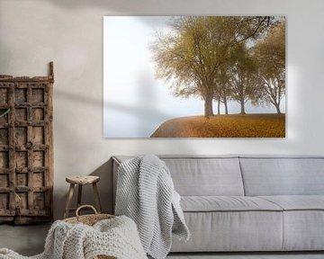 Herfsttooi aan het meer. van Rens Kromhout