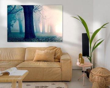 Ochtendzon, mist en bomen sur Rens Kromhout