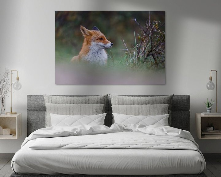 Sfeerimpressie: Portret van een vos van Pim Leijen