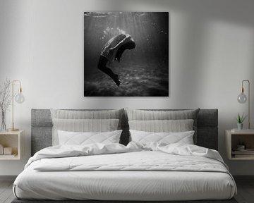 Onderwater van Didden Art