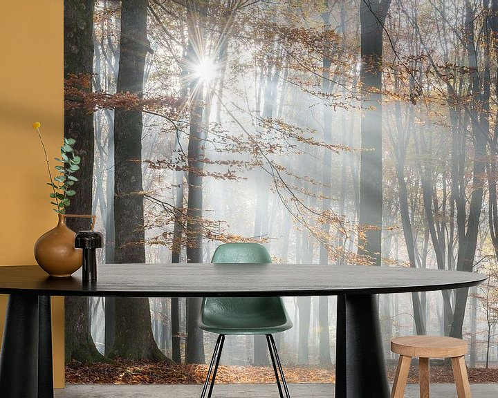 Impression: Forêt d'automne dans la brume sur John Verbruggen
