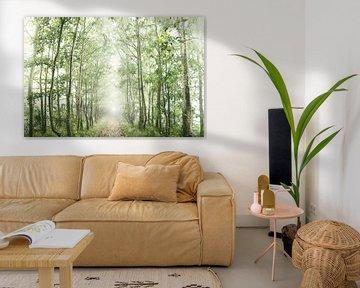 Mistig bos landschap  van Marloes Bogaarts