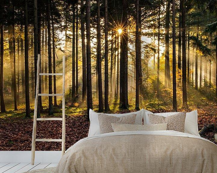 Sfeerimpressie behang: Herperduinen gouden zon door bos van Henk Verheyen
