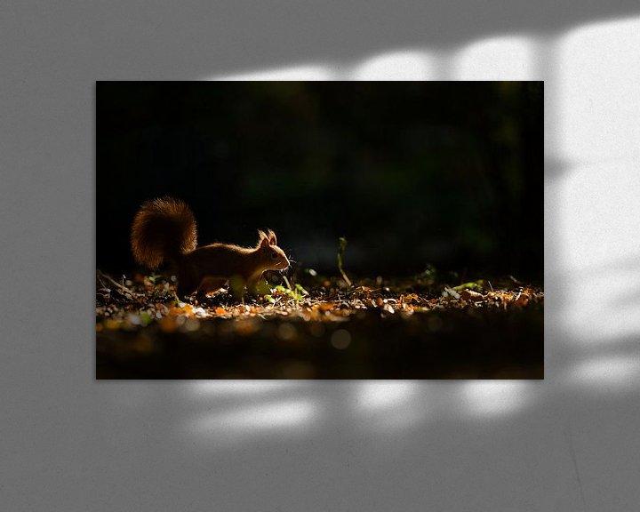 Sfeerimpressie: Mooi licht van Inge Duijsens