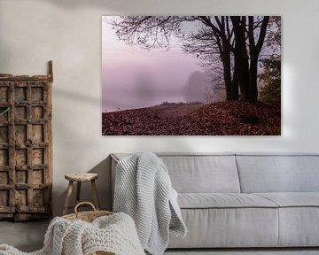 Misty Twilight Tree sur William Mevissen