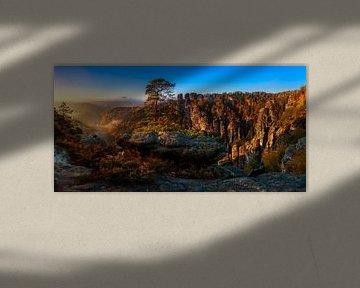 Blick in die Sächsische Schweiz von Daniela Beyer