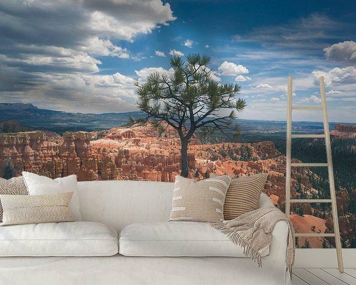 Sfeerimpressie behang: Eenzame maar sterke boom in Bryce van Jasper van der Meij