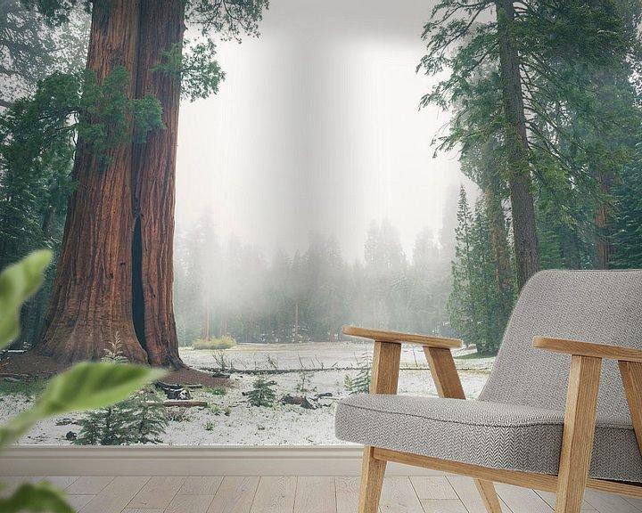"""Beispiel fototapete: """"Ed by Ned"""" tree, Sequoia National Park von Jasper van der Meij"""