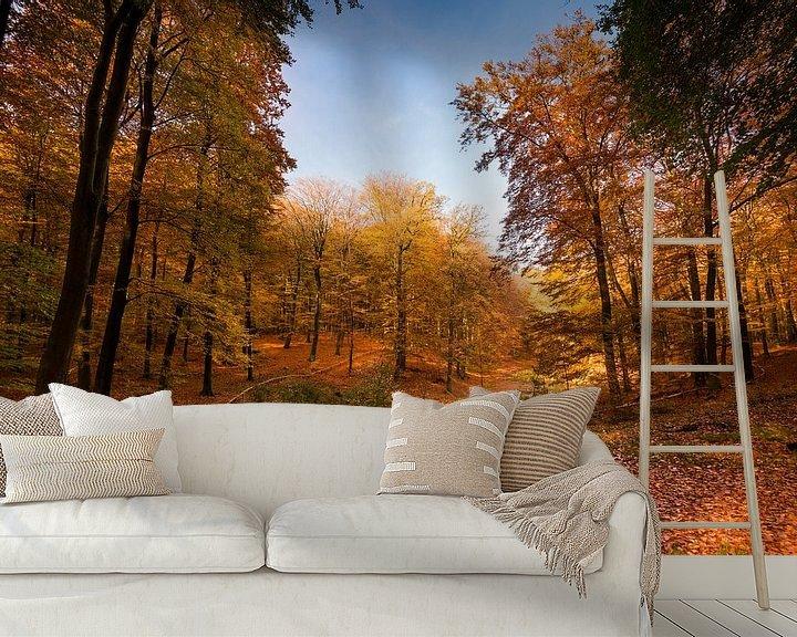 Sfeerimpressie behang: Bankje in herfst bos van Fotografie Egmond