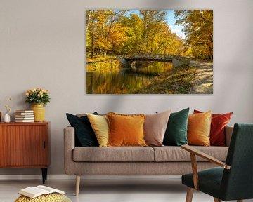 Herfstkleuren van Rob IJsselstein