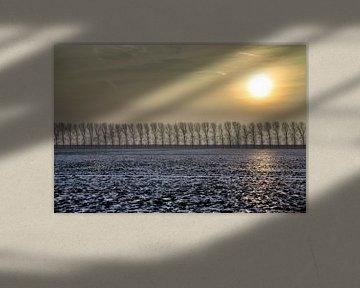 Zonnig winterlandschap van Jan Sportel Photography