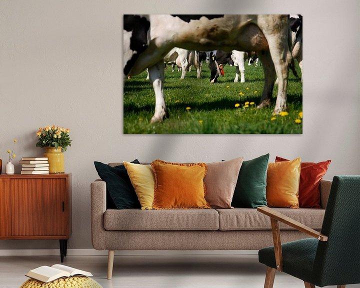 Sfeerimpressie: Koeien in de wei van Jan Sportel Photography
