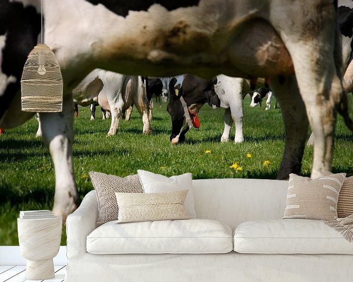 Sfeerimpressie behang: Koeien in de wei van Jan Sportel Photography