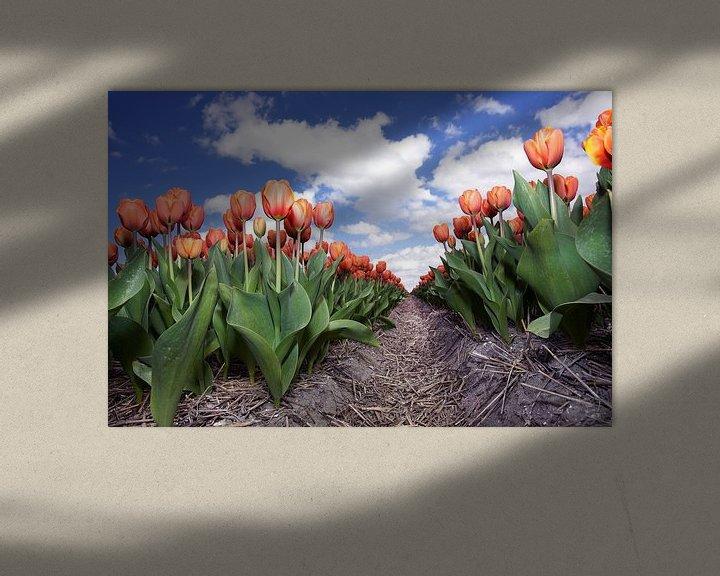 Sfeerimpressie: Eindeloze rij rode tulpen van Fotografie Egmond
