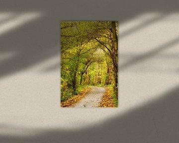 Herfst landschap van Irene Lommers