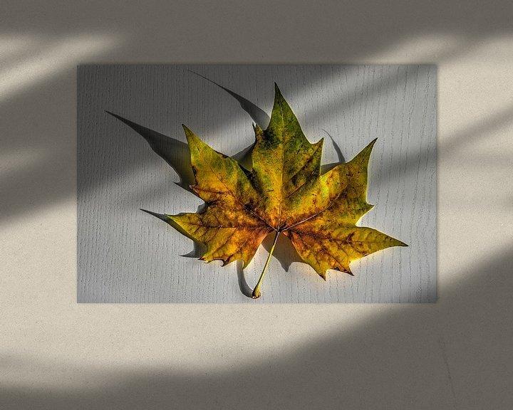 Sfeerimpressie: Herfstblad op een witte tafel van Frans Blok