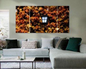 Herbstlicht von Christine Nöhmeier