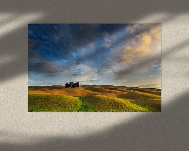 Sfeerimpressie: Golden Tuscany van Marc Smits