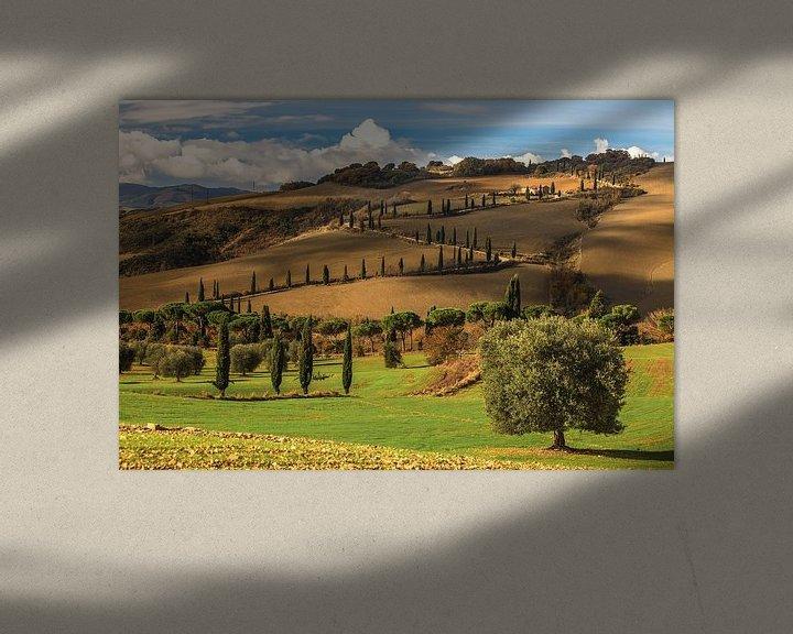Beispiel:  Die Toskanische Träume von Marc Smits
