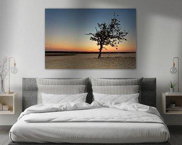 Sunset @ the Dunes I van Marc Smits